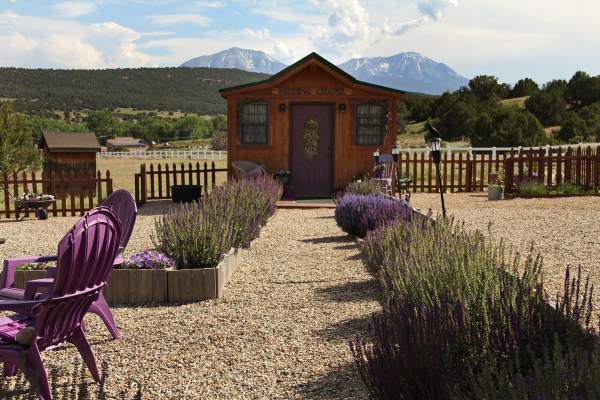 Wedding Venue Near Colorado Springs, Pueblo, Denver CO